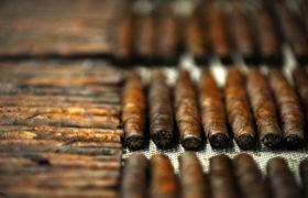 Il Tabacco Kentucky
